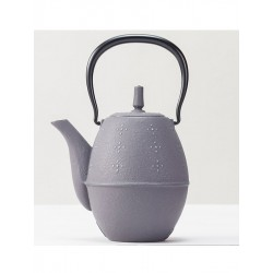 Rice Grey Teapot