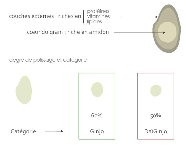 schemas explicatif du polissage du riz pour la production de saké Ginjo