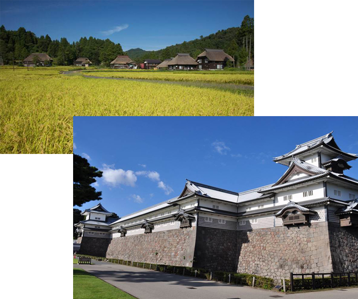 Chateau de kaga au Japon et village traditionnel japonais au fond d'un champ de riz