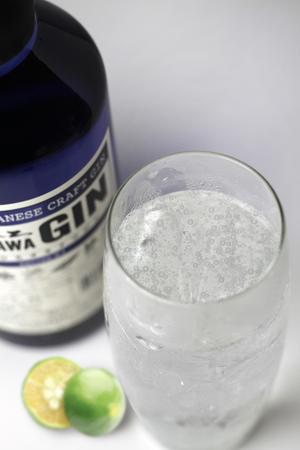 dégustation du gin japonais d'okinawa masahiro gin en gin tonic