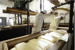 Brewers pressing the fermented rice through canvas bags for the production of sake