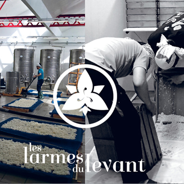Brasserie de saké Francais, les larmes du levant, France