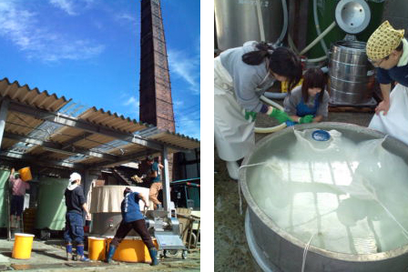 Two pictures illustrating the produciton of sake in Raifuku Shuzo sake brewery : washing rice and cooking-up