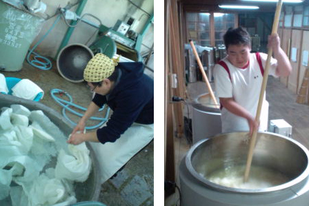 Two other images illustrating the sake produciton in Raifuku Shuzo: a person place the rice in the Koshiki for cooking, another person prepares the moto, the fermentation starter