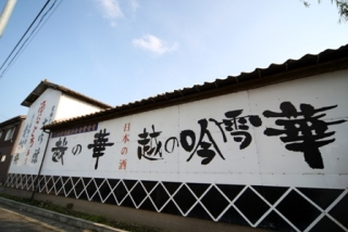 View of the back walls of Koshinohana Shuzo sake brewery